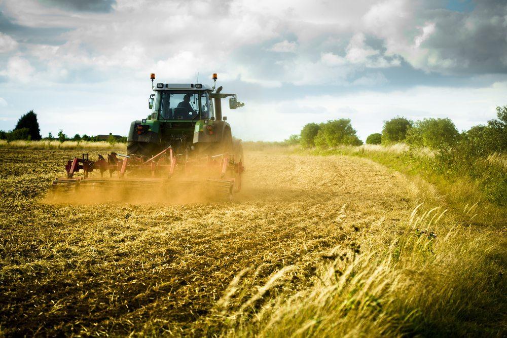Klasse statt Masse in der Landwirtschaft. (Bild: antb / Shutterstock.com)