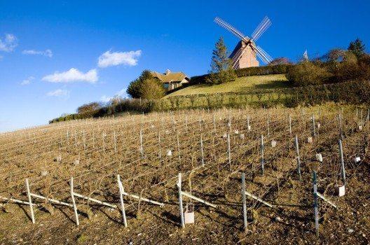 Mit den Weinbergen des Burgund und der Champagne gehören dazu auch zwei französische Weinregionen. (Bild: © PHB.cz (Richard Semik) - shutterstock.com)